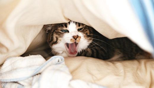 冬なのに暑い?厚い羽毛布団で寝苦しい、眠れない!