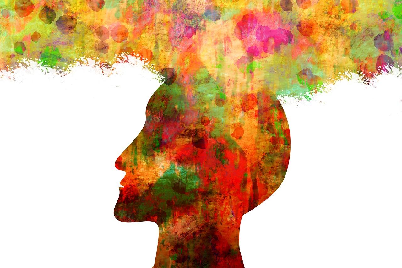 進化心理学という複素数的学問とプラセボ効果研究の未来